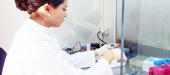"""""""Análisis de la expresión de biomarcadores de calidad ovocitaria en células de granulosa humana por la técnica de RT PCR."""""""