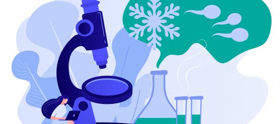 """""""Desarrollo de técnicas para la preservación de bajo número de espermatozoides."""""""