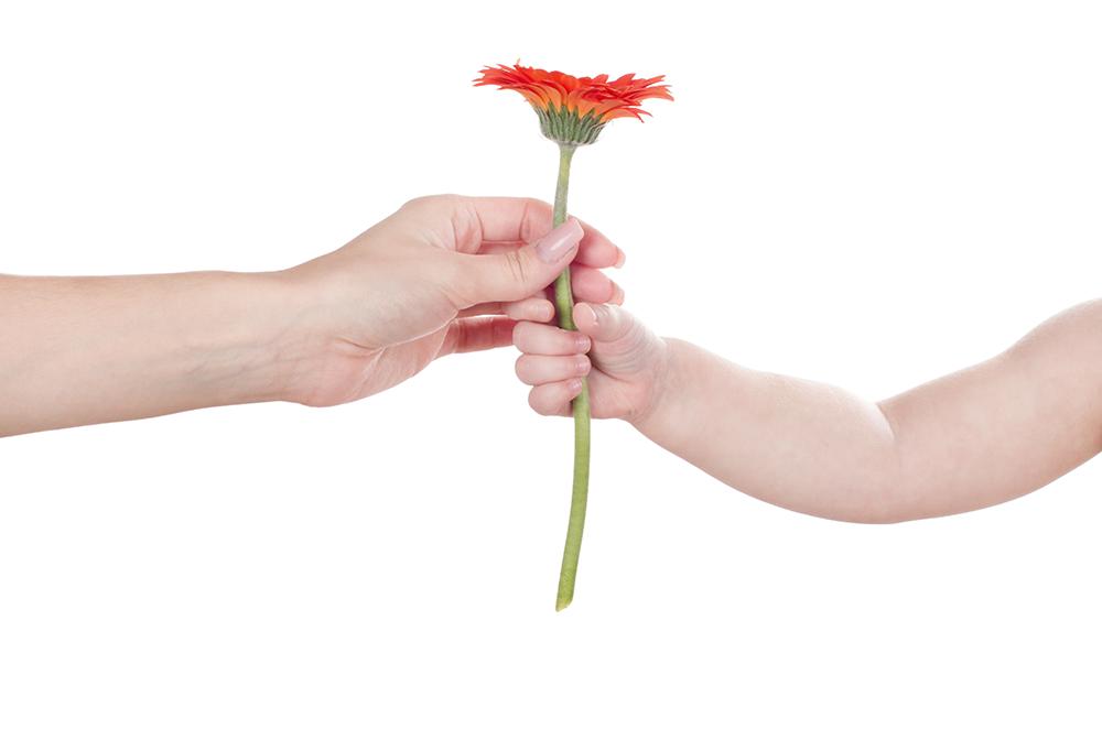 Por qué en primavera aumentan las probabilidades de concebir un bebé